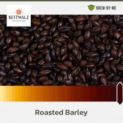Roasted Barley - Bestmalz